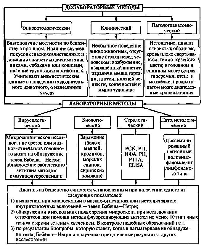схема лечения грибы дрожж
