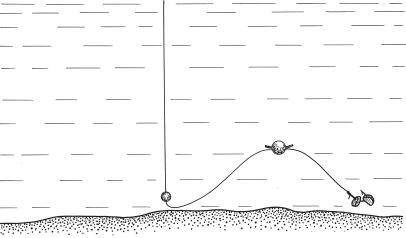 как ловить рыбу если дно илистое
