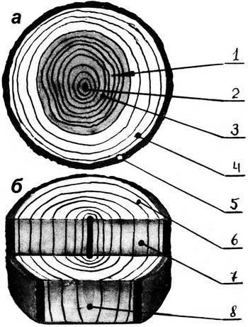 Торцевое дерево