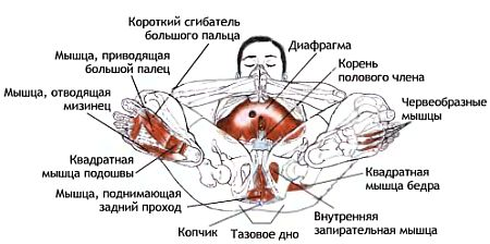 pornuha-zhestkach-na-russkom-yazike