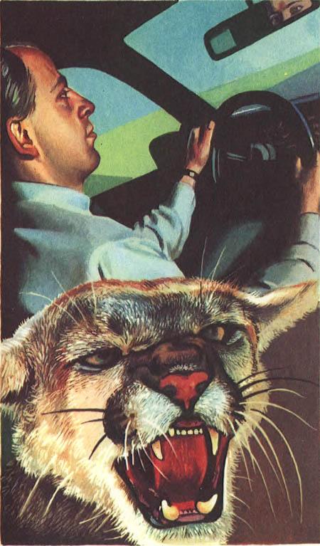 Миры Клиффорда Саймака. Книга 9