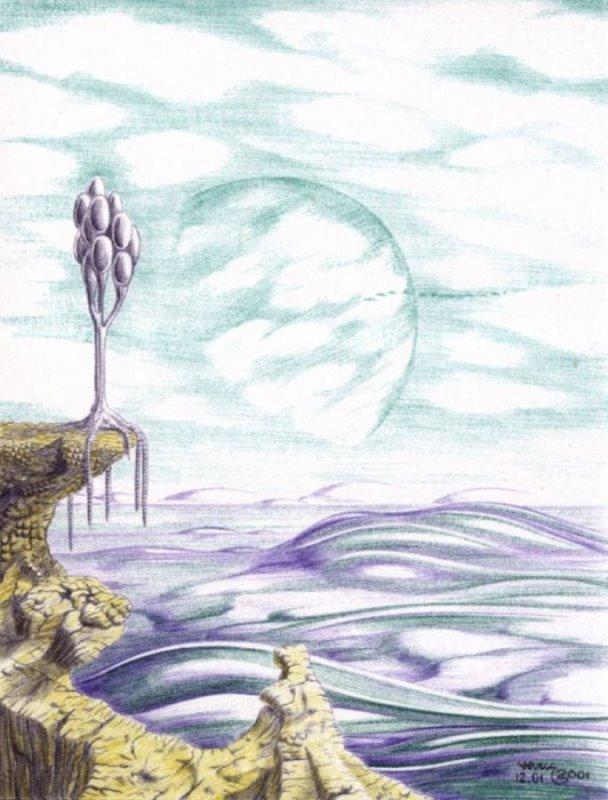 Безымянный локсреаль