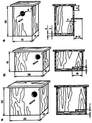 Как сделать попугая своими руками в домашних условиях