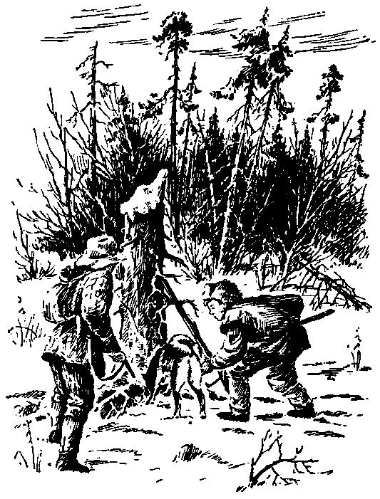 Огненное болото
