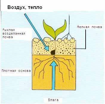 Системы минимальных обработок почвы