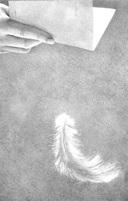 Гвенди и ее волшебное перышко