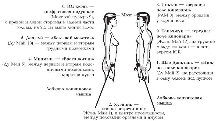 May 18, 2013 - Как правильно мастурбировать. Как женщины, так и мужчины хо