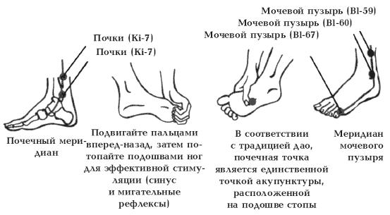trahayut-volosatim-chlenom