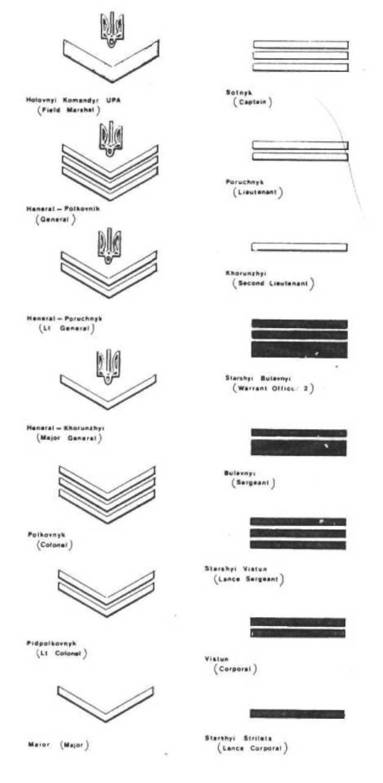 Армейские погоны и звания в картинках