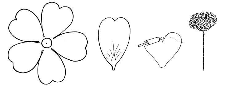 У цветка шиповника характерная
