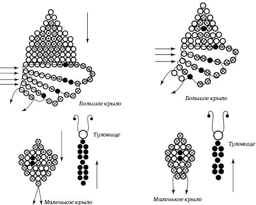 бисероплетение бабочки схемы.