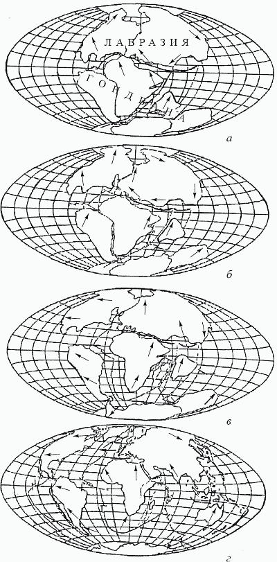 Удивительная палеонтология. История земли и жизни на ней