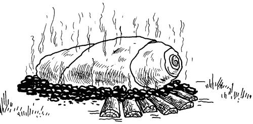 Как сохранить и приготовить рыбу на водоеме и дома