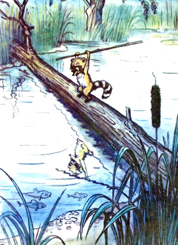 Крошка Енот и тот, кто сидит в пруду