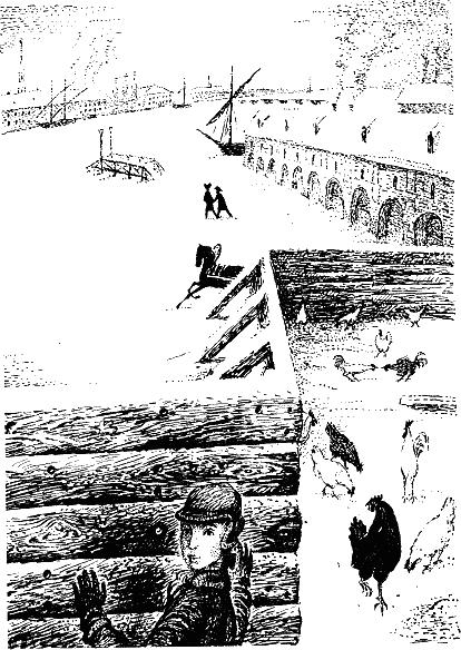 Черная курица, или Подземные жители