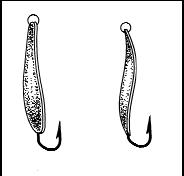 Справочник рыболова