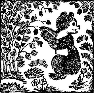 Сказки черепахи Кири-Бум