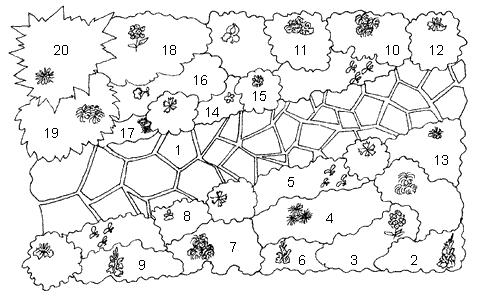 Хост и других декоративных растений