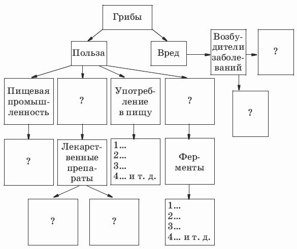 Используя схему, подготовьте рассказ о роли грибов в хозяйственной деятельности человека.  I. Хитридиомицеты.  III.