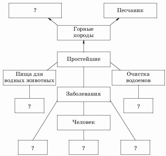 """3. 1. Вольвокс не имеет постоянной формы тела.  2.Дополните пропущенные фрагменты схемы  """"Значение простейших """"."""