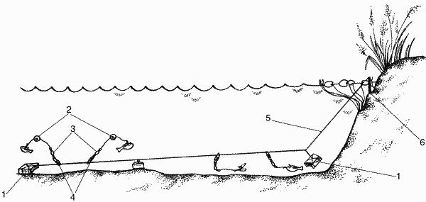 Ловушка на сома